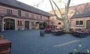 Weingut in Deidesheim